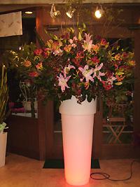 スタンド花 光るスタンド花